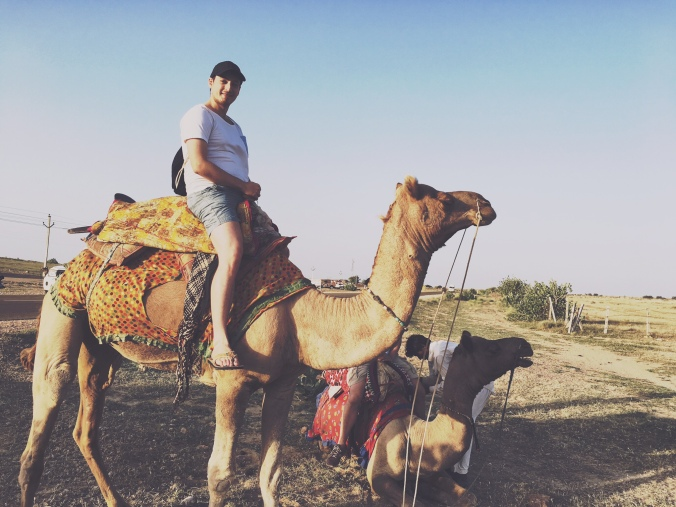 Liebling? Lässt mich dieses Kamel fett aussehen?